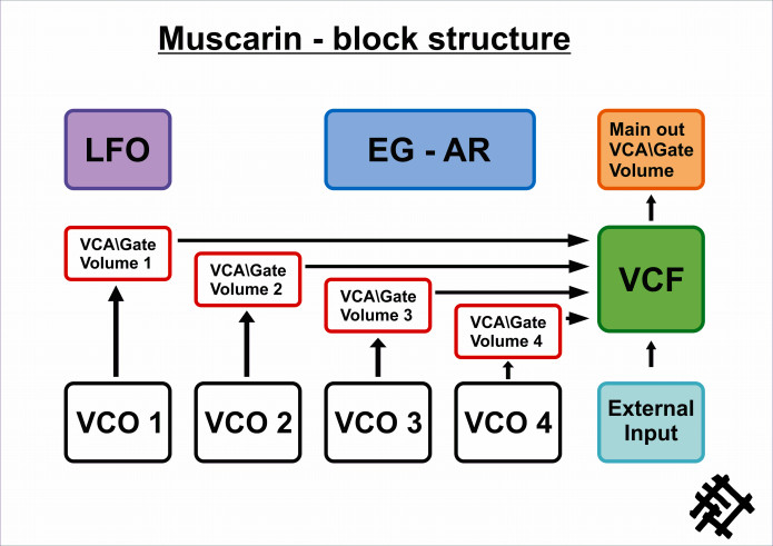 Muscarin synthesizer structure