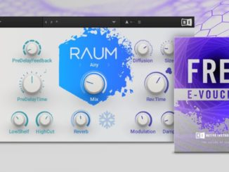Native Instruments Raum